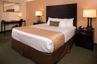 Standard Room, 1 King Bed, Smoking, Refrigerator & Microwave