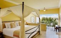 Premium Jr. Suite King Garden View