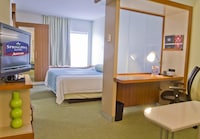 Suite, 1 King Bed with Sofabed