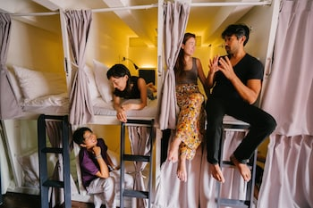 Tribe Theory - Business Hostel…